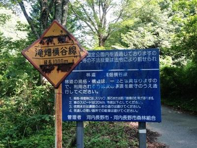 林道・滝畑横谷線