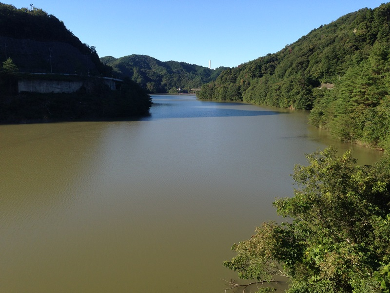 増水した滝畑ダム
