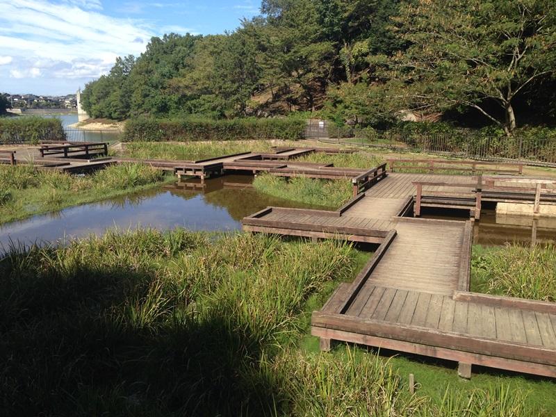 池ノ上のクランク