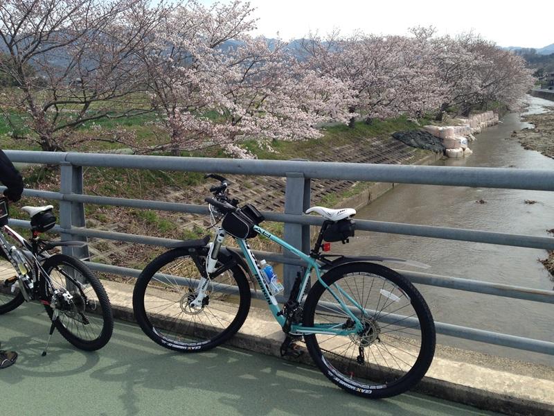 橿原市内の自転車道