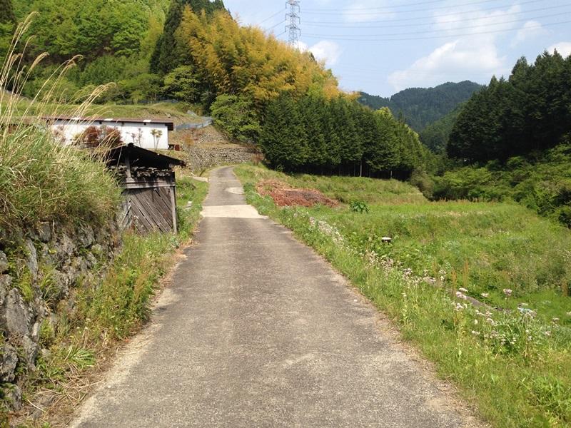 林道・島の谷線入ってすぐの風景