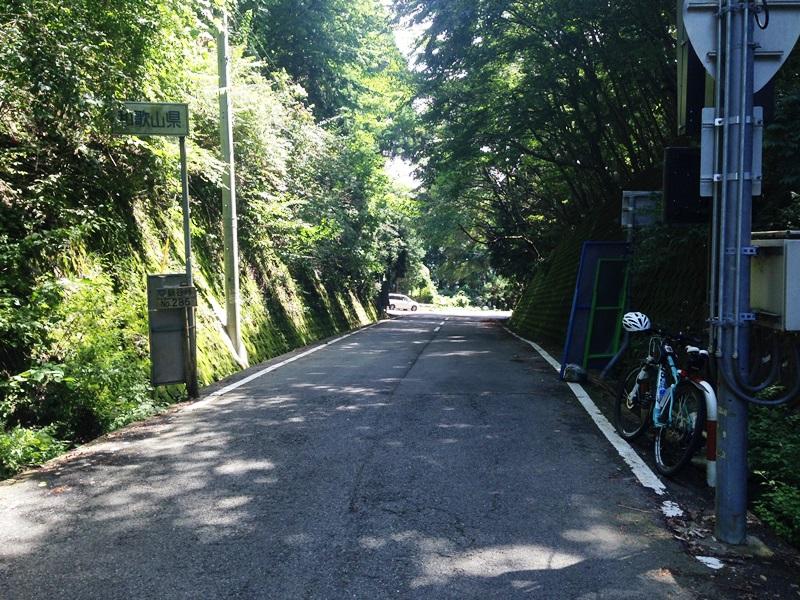 鍋谷峠から和歌山側を見る