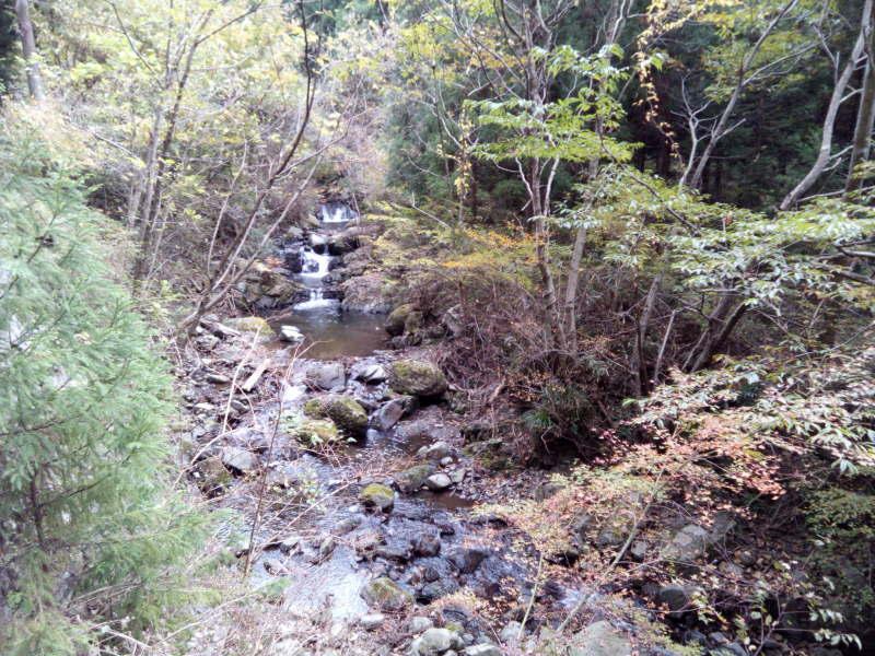 岩湧山に向かう林道脇の川と滝と紅葉