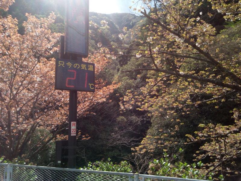 滝畑ダムは21℃