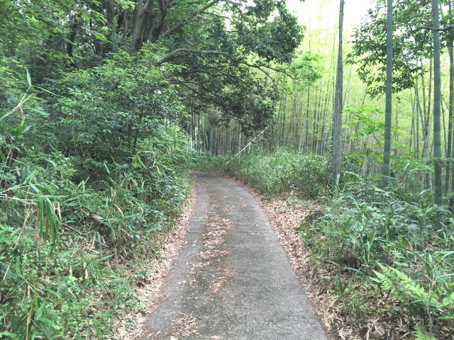 天野街道を迂回して小山田方面に向かう道