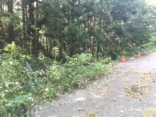 紀見峠までの旧国道は一部でフェンス倒壊