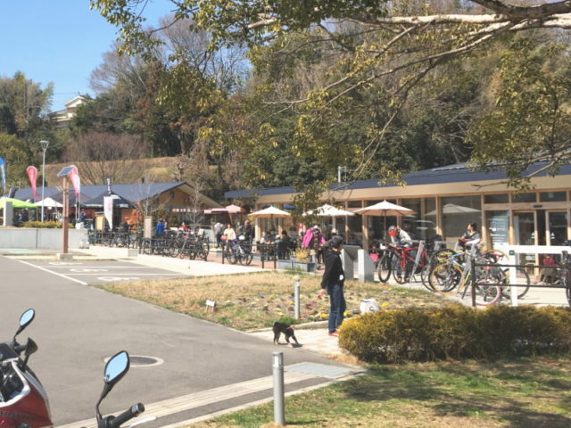 南大阪サイクリングフェスタ@奥河内くろまろの郷